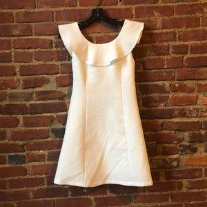 She & Sky Textured Ruffle Collar Mini Dress
